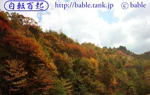 飛騨の紅葉H25.10.27